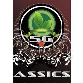Assics 5g
